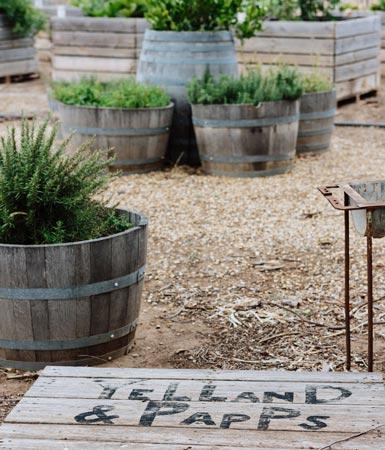 Yelland & Papps Barossa - Gardens